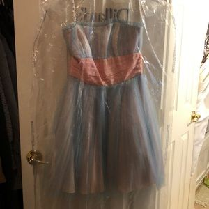 Rare. Retired, Betsey Johnson Evening Dress